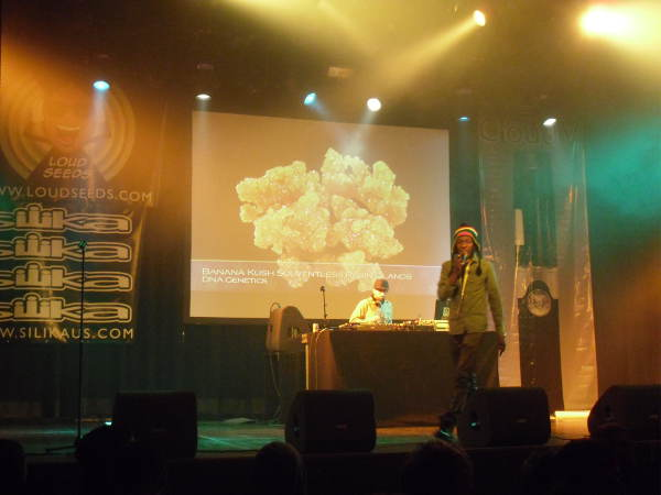 cannabis-cup-2014-amsterdam-report-2