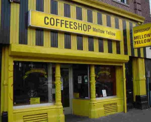cannabis-cup-2014-amsterdam-report-high-times-coffee-shop-mellow
